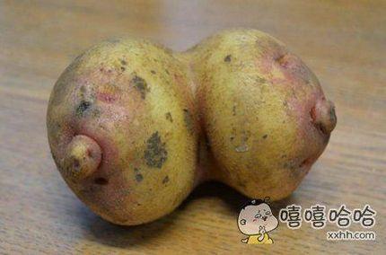 让我以后怎么直视土豆