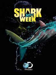 鯊魚周2018
