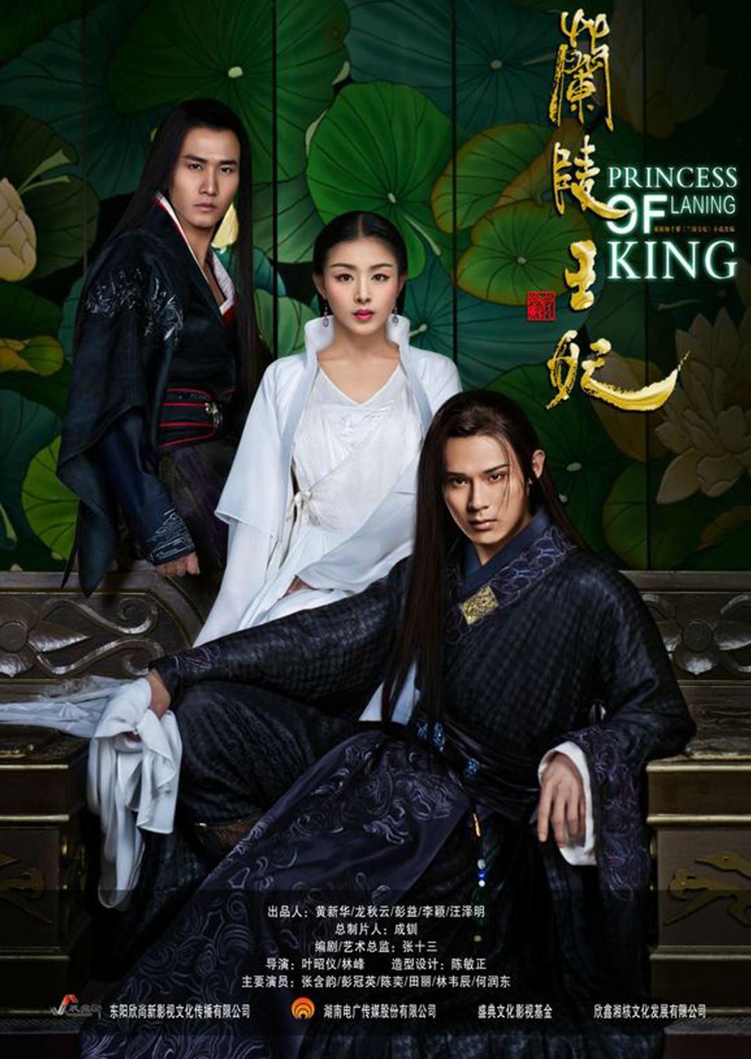 兰陵王妃 DVD版
