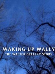 醒醒,沃利