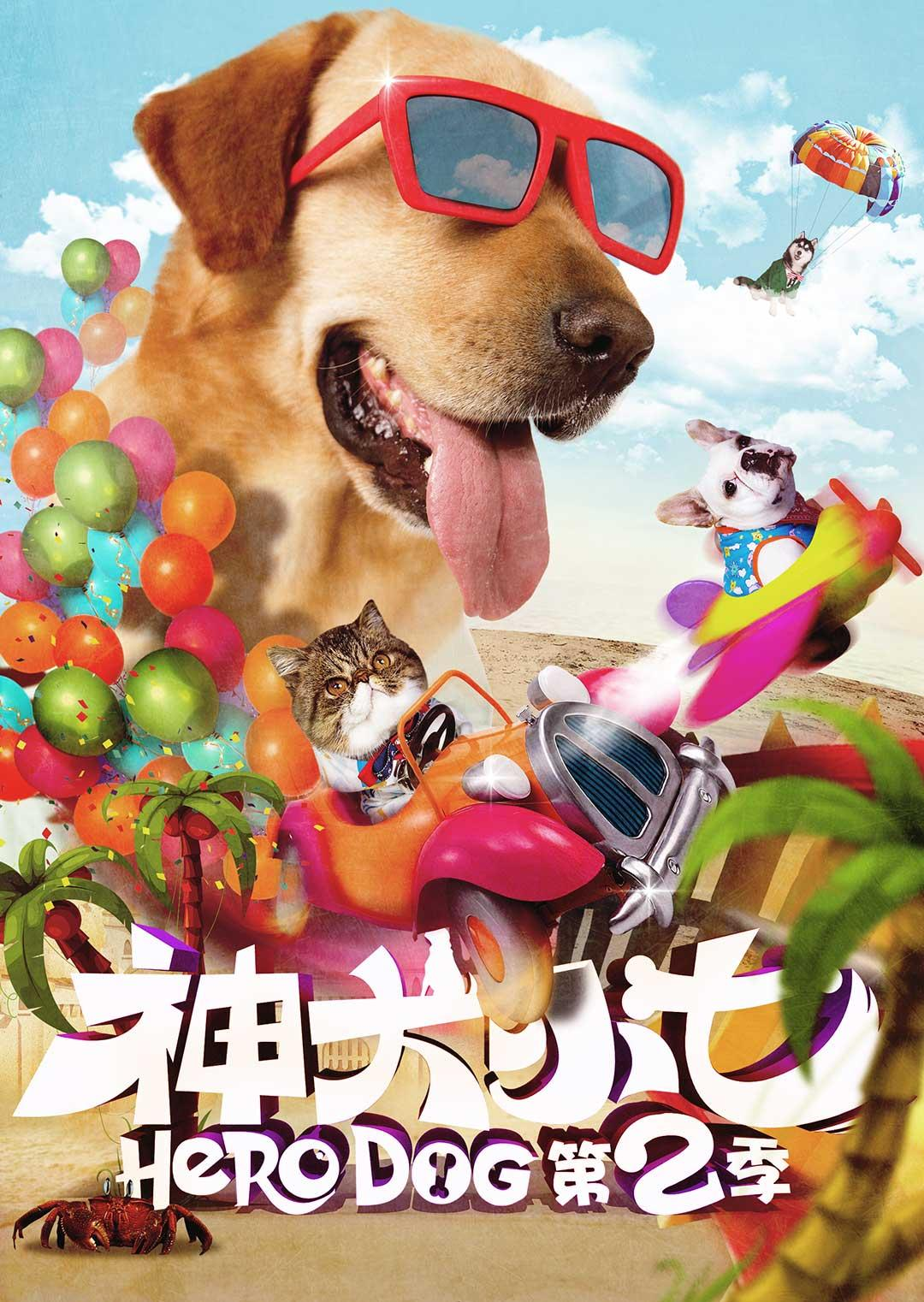 神犬小七 第二季 DVD版