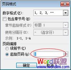 Word2003从任意页开始设置页码